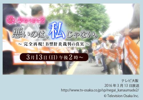 テレビ大阪様B型肝炎訴訟特番画像